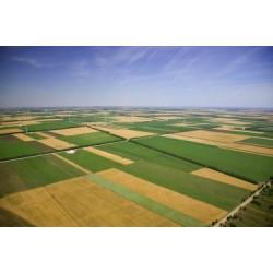 Къде и как да продам най-изгодно земеделска земя?